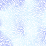 06_02_04 tn