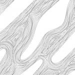 curve-Evolve_TN