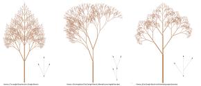 Fractals   Generative Landscapes